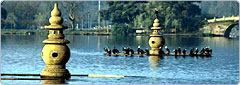 Hangzhou Travel China